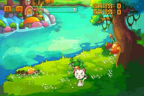 快乐大森林-快乐猫咪