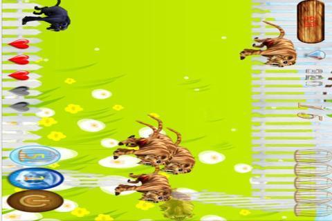 动物大逃亡下载_动物大逃亡安卓版下载