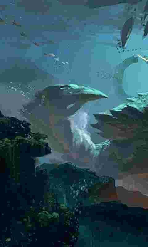 壁纸 动物 海底 海底世界 海洋馆 水族馆 鱼 鱼类 480_800 竖版 竖屏